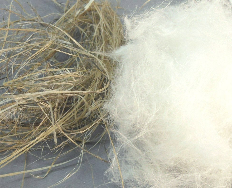 Degumming and cottonization of unretted hemp by Catalytic Advanced Oxidation Hydrogen Link catalyst