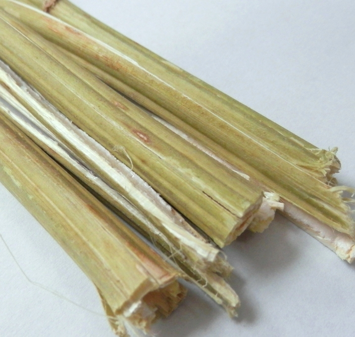 Hemp stems with bast skin unretted non-decorticated