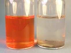 Orange II dye wastewater decoloration Catalytic Advanced Oxidation catalyst Hydroge Link